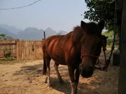 ecotourism in Laos